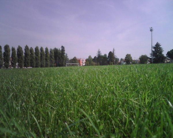 Impianto sportivo in erba naturale di Green Power Service